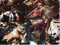 Alchimages 2005 – encre et huile/toile -  photos détournées